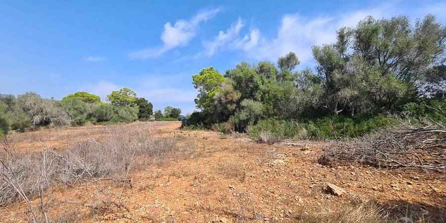 Plot near the marina of Cala D'or to build a villa with pool