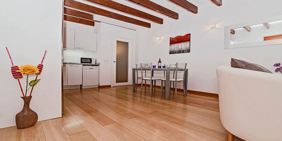 Modern and spacious one bedroom apartment in the casco antiguo by Palma Cathedral.