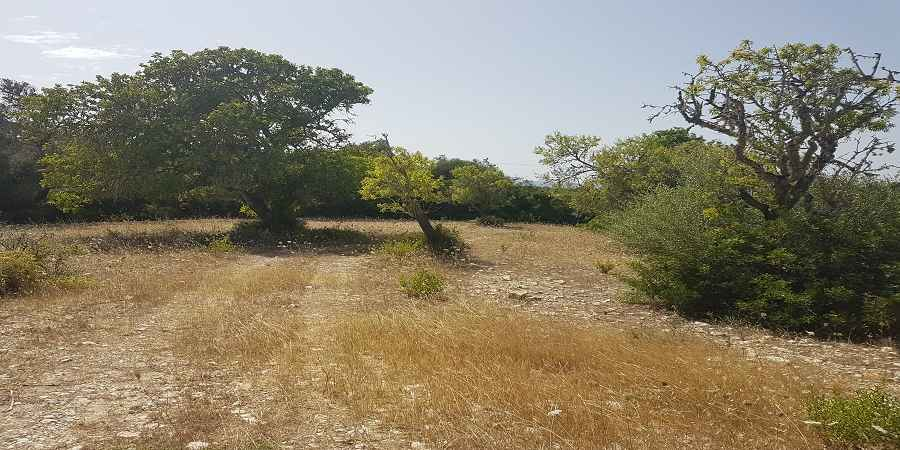 Beautiful plot in the hills of Santueri castel with views of Sant Salvador and approved project, for sale