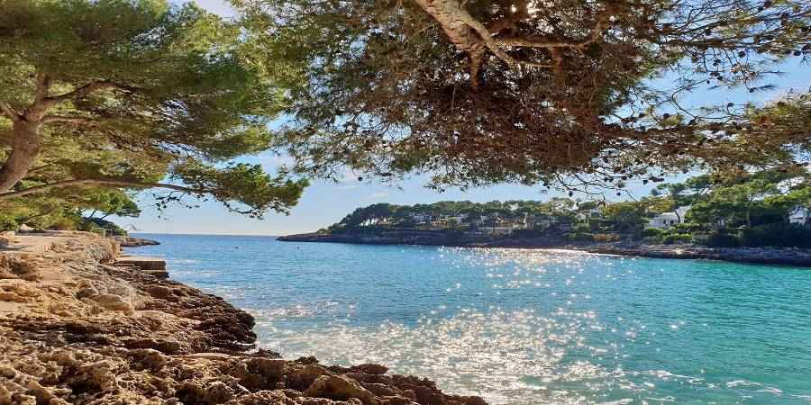 Active 3 star hotel with 80 rooms, Mallorca